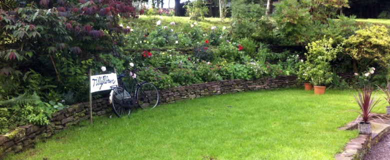 Terracing a Cottage Garden