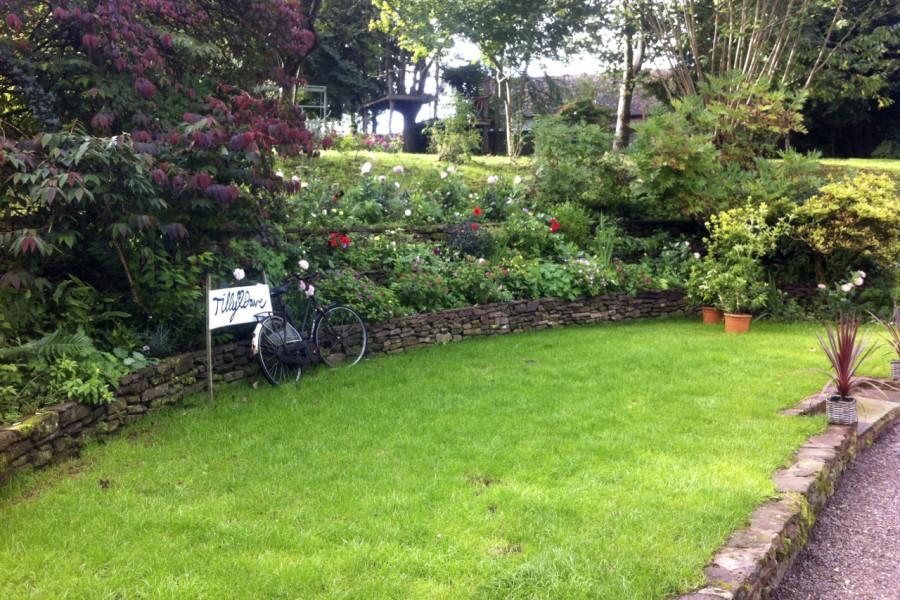 Terracing a Cottage Garden